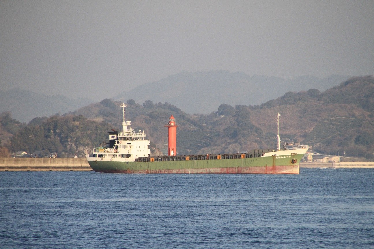 1100DWT GENERAL CARGO VESSEL FOR SALE/1991YEAR JAPAN BUILT photo image