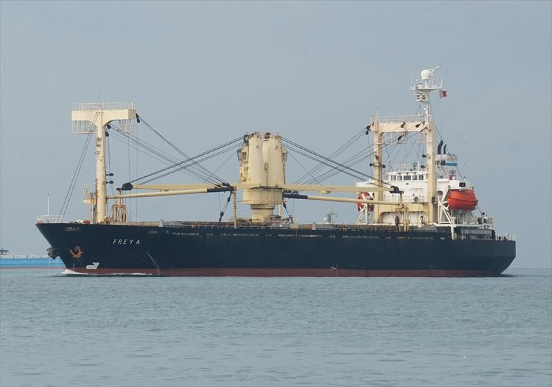 8,876DWT GENERAL CARGO SHIP FOR SALE/1994YEAR JAPAN BUILT photo image