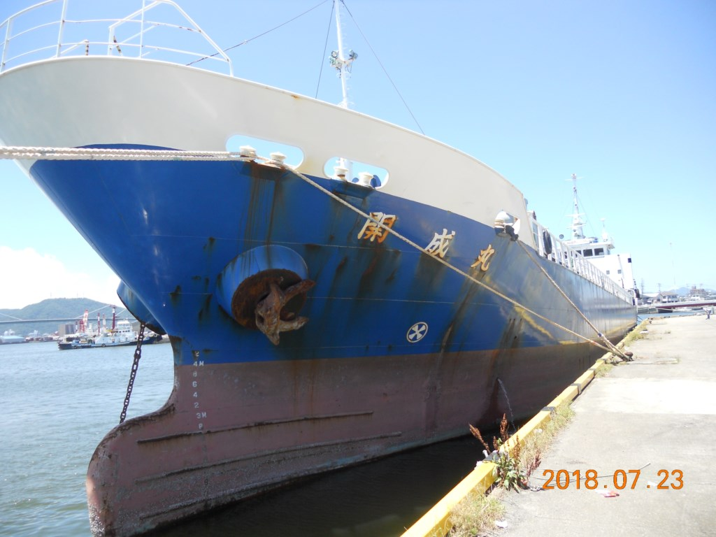 1250DWT CARGO SHIP FOR SALE/1995YEAR JAPAN BUILT photo image