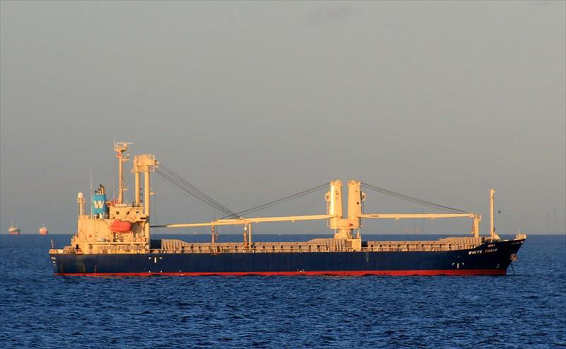 11,342DWT GENERAL CARGO SHIP FOR SALE/2008YEAR BUILT photo image