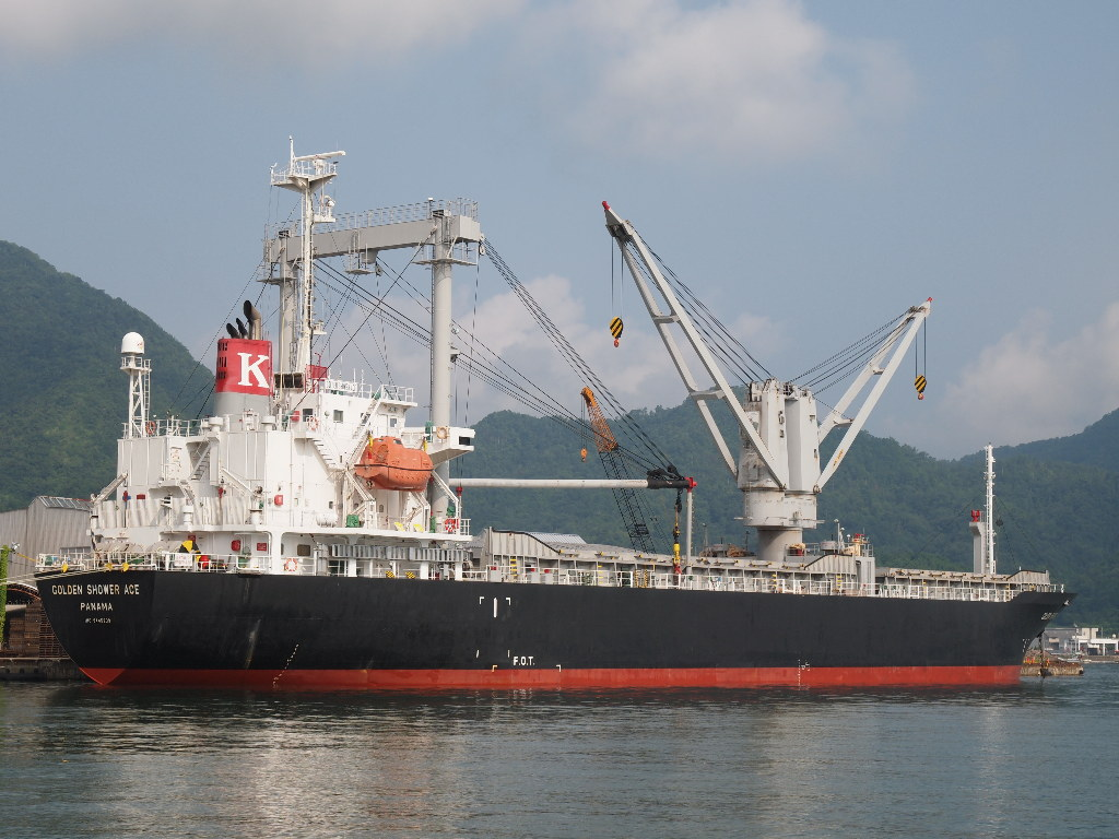 10,132DWT GENERAL CARGO SHIP FOR SALE/2008YEAR JAPAN BUILT photo image
