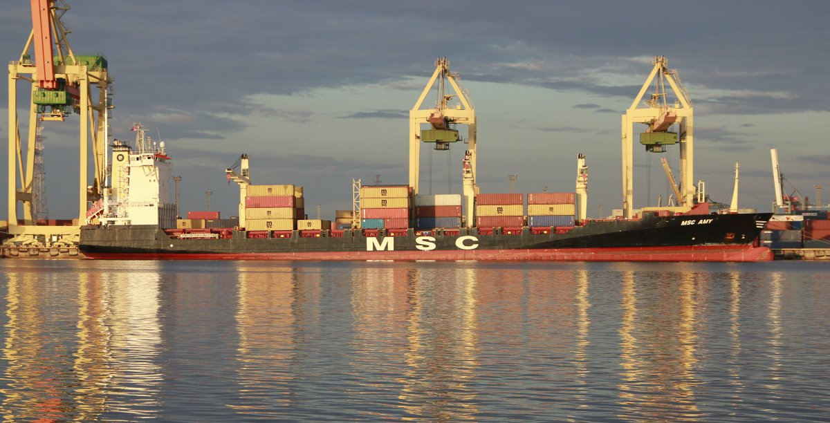 MSC AMY vessel IMO:9242651