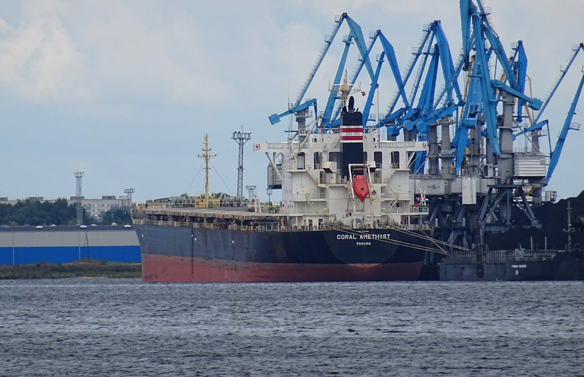 CORAL AMETHYST Bulk carrier vessel IMO:9620621 photo image
